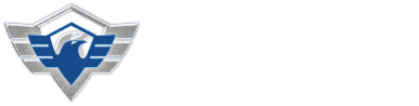 Cyber Security IPS